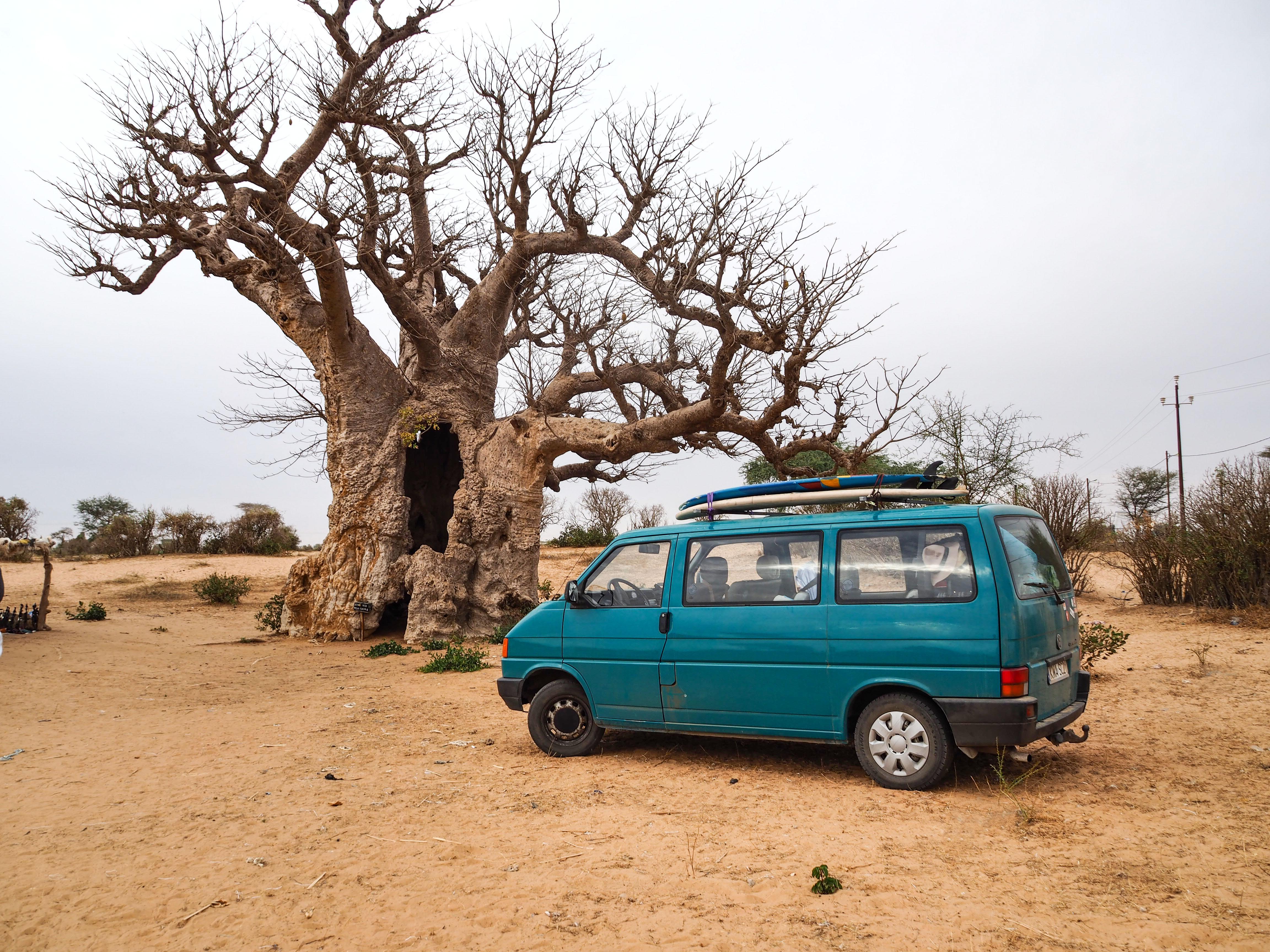 African Road Trip, HollyCiw, Senegal, Baobab, Martyna Skura, lifein20kg