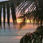 Kiedy i gdzie jechać na Malediwy?